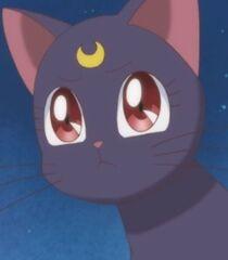 Luna in Pretty Guardian Sailor Moon Crystal.jpg