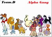 Team d and Alpha Gang (1701Movies style)