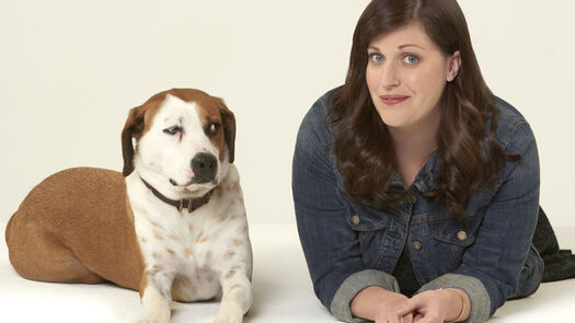 TV Review: ABC's 'Downward Dog,' Starring Allison Tolman