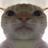 Assdickgaming420's avatar