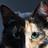 Cool kitti's avatar
