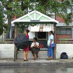 Barbados bus stop