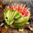WeirdAlex03's avatar