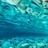 LiviJay3's avatar