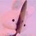 Hannahgrace.05's avatar