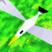 Skooa's avatar