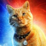 Valyrian Wildfire's avatar