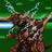 ZeedKZ's avatar