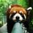 Clarencetherainybean's avatar