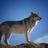DarkWolf2244's avatar