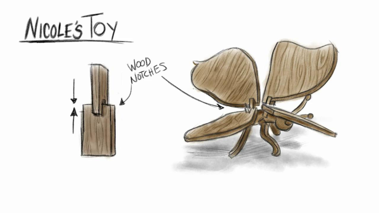 Nicole's Toy