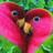 Flowertje's avatar