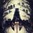 Pola1301's avatar