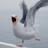 Julia1023 AJ's avatar