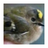Natunen's avatar