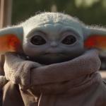 Immabird's avatar