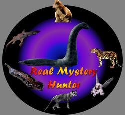 Real Mystery Hunter.jpg