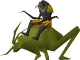 Locust rider