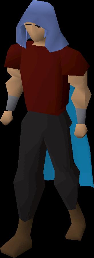Castlewars hood (Saradomin)