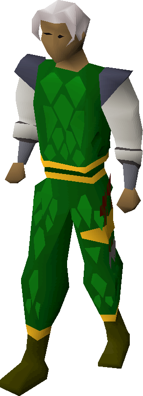 Green d'hide gold-trimmed armour