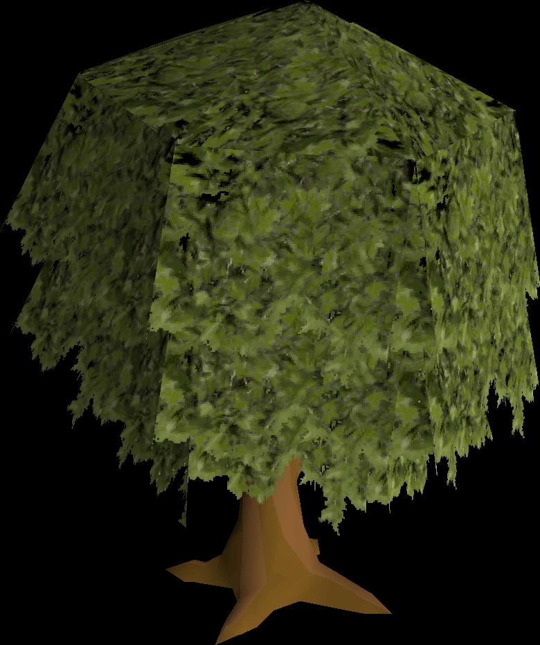 Oak tree (Construction)
