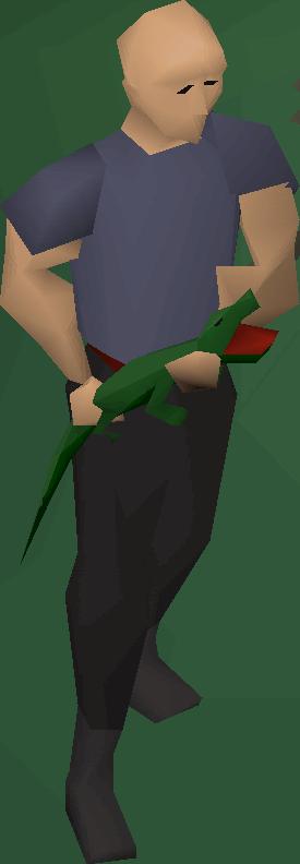 Swamp lizard