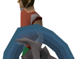 Ancient wyvern shield