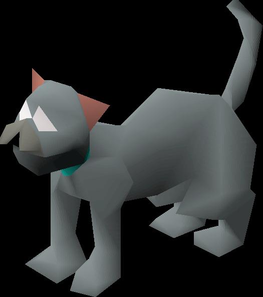 Bones (kitten)