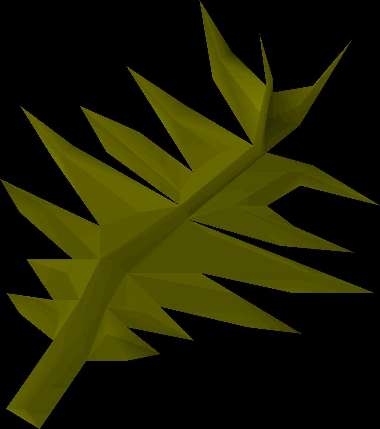 Swamp weed