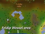 Feldip Weasel