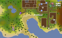 Brimhaven South Mine.png
