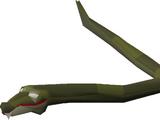 Bush snake