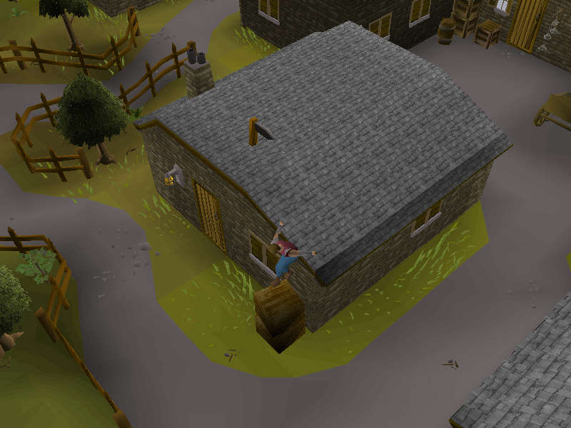 Draynor Village Agility Course 7.png