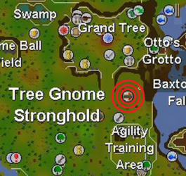 Tree Gnome Stronghold balloon map