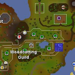 Guildmaster Lars location.png