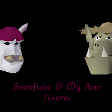 Making Friends with My Arm - Snowflake and My Arm forever.png