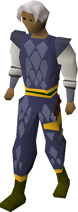 Blue d'hide gold-trimmed armour