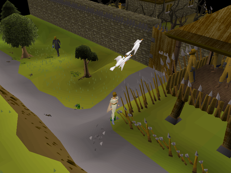 Releasing the Pigeons.png