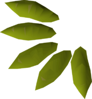 Willow seed detail.png