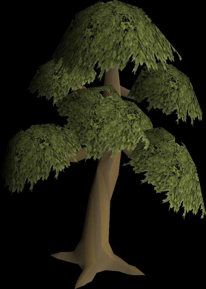 Yew tree (Construction)