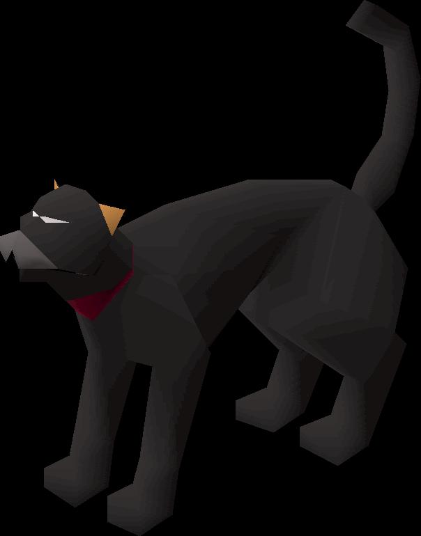 Bob (cat)