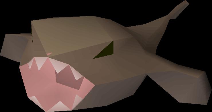 Money making guide/Cooking raw monkfish