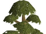 Money making guide/Cutting yew logs