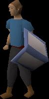Training shield