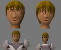 Bowl wig work-in-progress