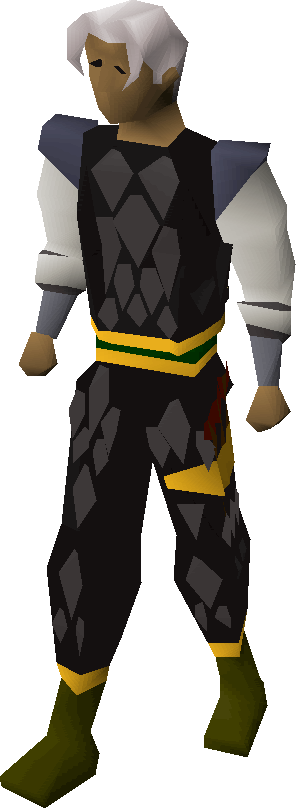 Black d'hide gold-trimmed armour