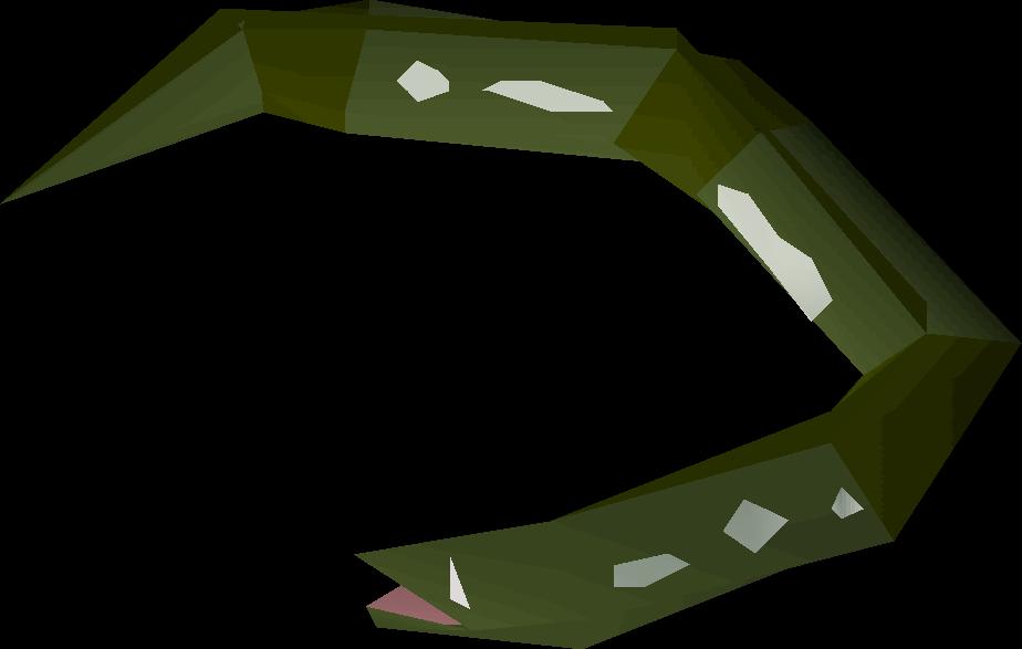 Raw slimy eel
