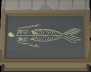 Merfolk Skeleton display
