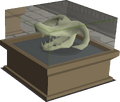Wyvern skull display