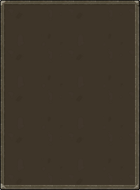 The inventory interface.